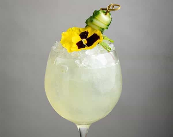 daphnes wh drinks image